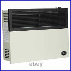 17,000 BTU Direct Vent Propane Heater