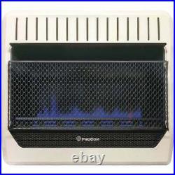 ProCom 30,000 BTU Natural Gas or Propane Gas Vent-Free Blue Flame Wall Heater
